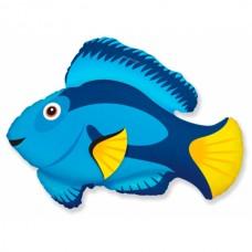 Фольгированный шар Рыбка синяя